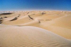 desert-caravan