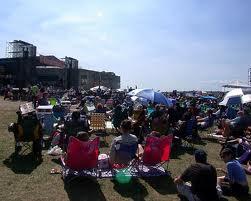 Newport crowd shot